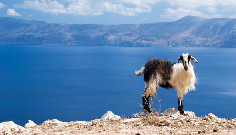 Warme-Reiseziele-in-Europa-Kreta